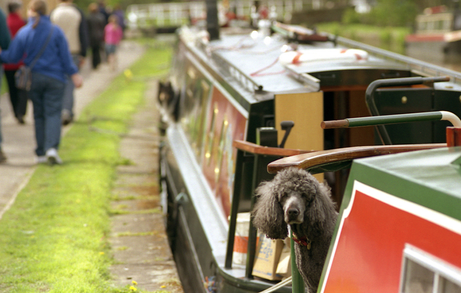 Canal traffic.